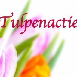 Tulpenactie